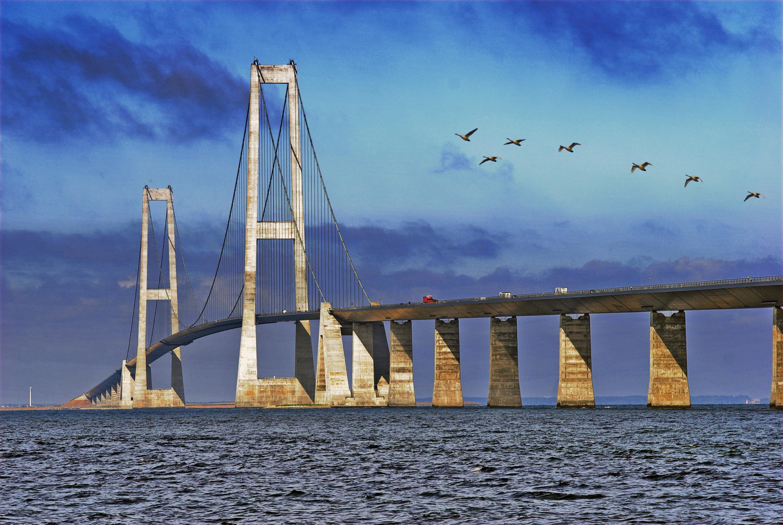 jylland-sjælland erhvervstransport